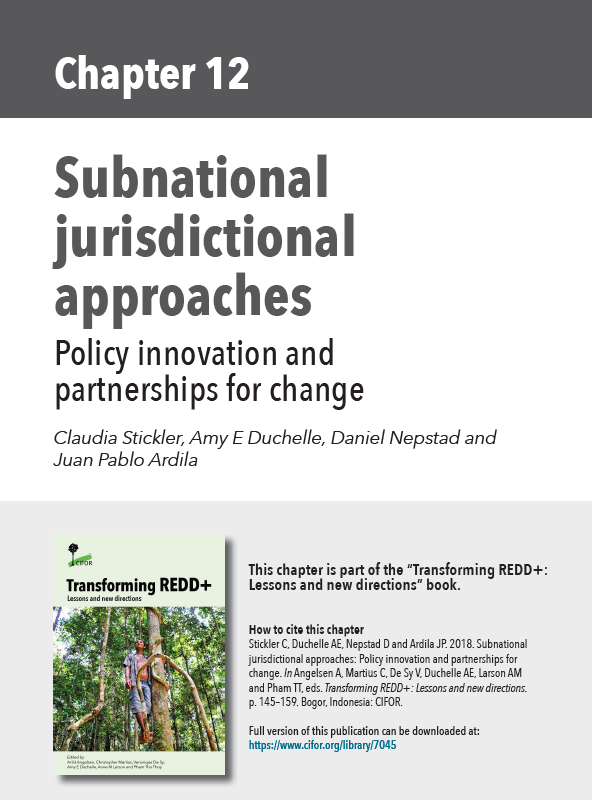 Subnational Jurisdictional Approaches: Policy Innovations and Partnerships for Change