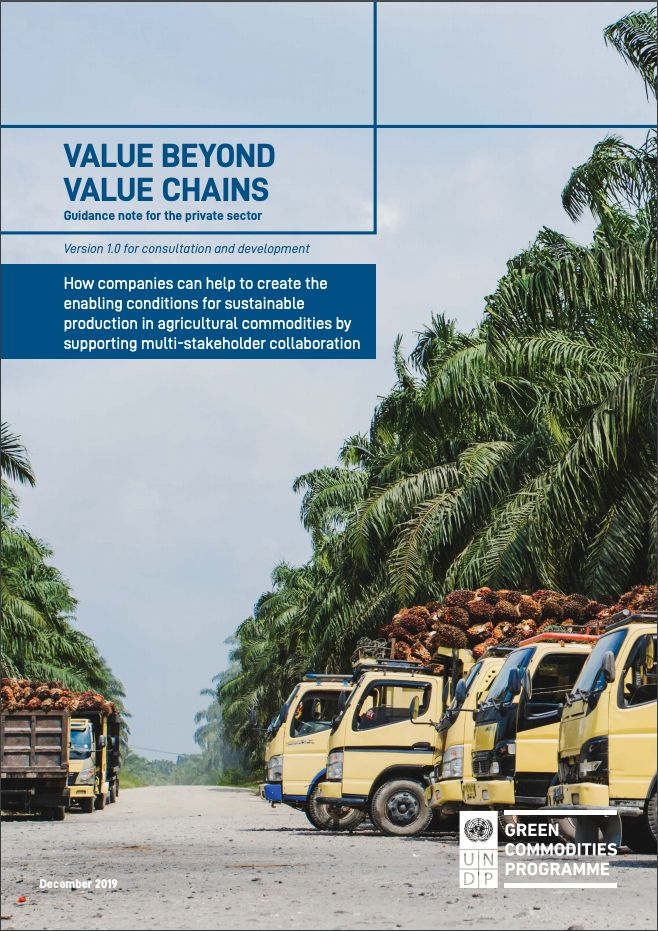 Value Beyond Value Chains: Guidance Note for the Private Sector