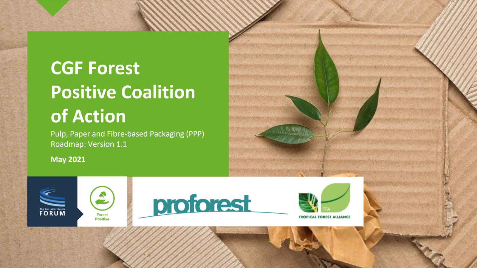CGF Forest Positive Coalition of Action Pulp, Paper and Fiber-based Packaging (PPP) Roadmap: Version 1.1