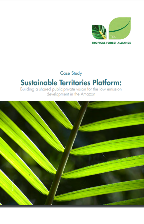 Sustainable Territories Platform: Building a Shared Public-Private Vision for the Low Emission Development in the Amazon